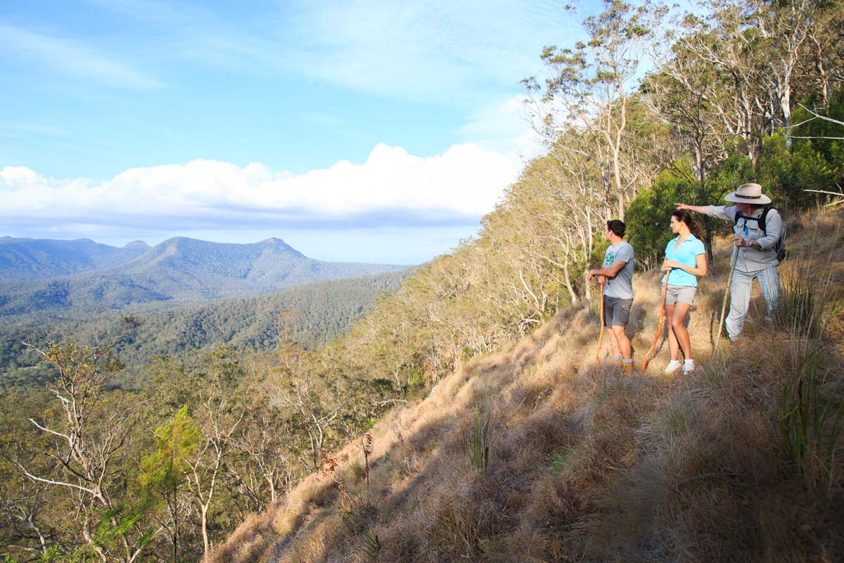Take in spectacular views at Northern Lookout on the Scenic Rim Trail in Queensland, Australia.