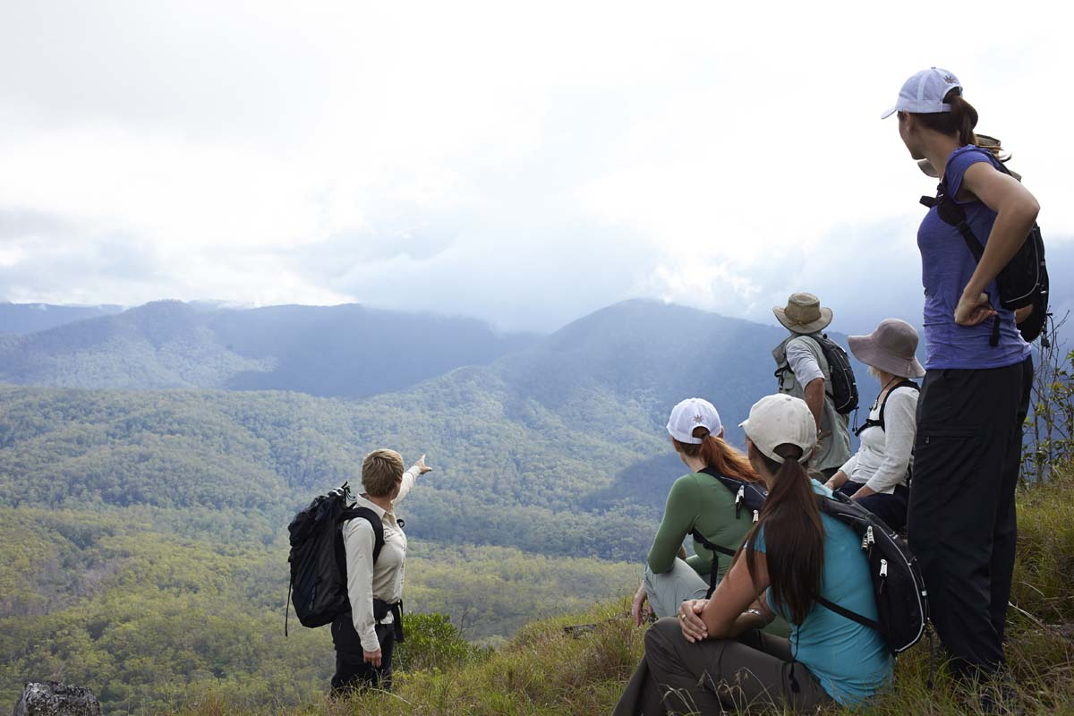 Learn from your guide along the way with Great Walks of Australia on the Scenic Rim Trail.