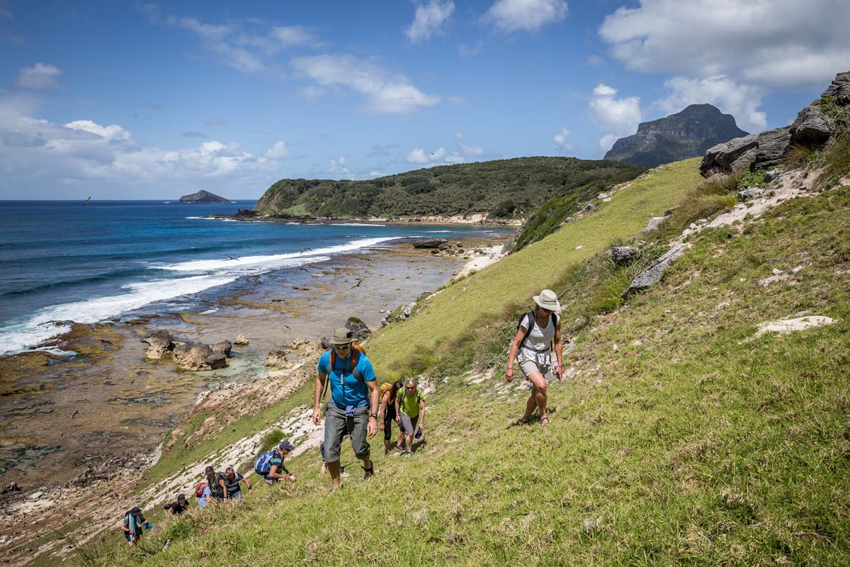 Walk in a group with other walkers on the Seven Peaks Walk on Lord Howe Island.